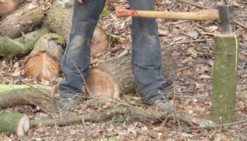 Axt im Holz